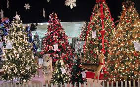 Christmas Tree Shop Natick Massachusetts by Artificial Christmas Trees