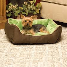amazon com k h pet products self warming lounge sleeper pet bed