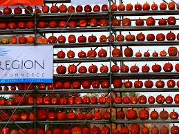 Pumpkin Festival Keene Nh 2014 by 2016 Laconia U201cnh Pumpkin Festival U201d October 22 Pictures U2014 In The