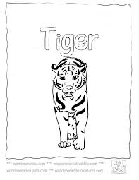 Tiger Coloring Pages At Wonderweirded Wildlife