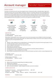 Account Manager CV Example 7