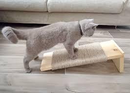318 best diy cat projects images on pinterest cat stuff cat