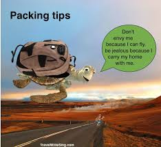 Travel Packing Tips Envy The Turtles