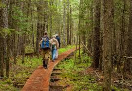 Where are Minnesota s secret hiking trails Don t tell anyone