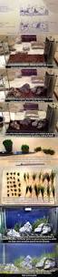 Spongebob Aquarium Decorations Canada by Best 25 Tanked Aquariums Ideas On Pinterest Amazing Fish Tanks