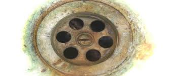Bathtub Drain Strainer Replacement by How To Replace A Bathtub Drain Flange Doityourself Com