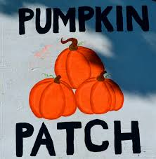 Pumpkin Patch Naples Fl by Pumpkin Patches In Coral Springs Florida