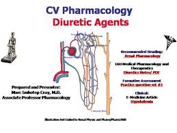 High Ceiling Diuretics Ppt by Pharmacology Of Diuretics Authorstream