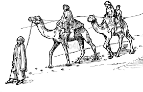 Camel Safari Coloring Page