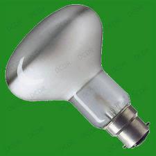 Reptile Heat Lamps Uk by Bayonet Heat Bulb Ebay