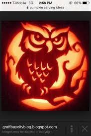 Cute Pumpkin Carving Ideas by 27 Best Pumpkin Ideas Images On Pinterest Halloween Crafts