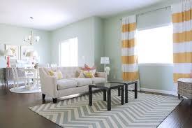 blue rug living room home design ideas