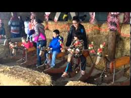 Silveyville Pumpkin Patch Dixon Ca by Special Needs Day At Silveyville Xmas Tree Farm Youtube