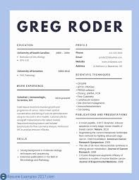 Great Resume Examples Samples Inspirational Of