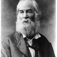 Walt Whitman The Wound Dresser Pdf by 28 Best Walt Whitman Images On Pinterest Walt Whitman Leaves Of
