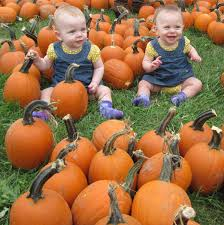 Pumpkin Patch Miami Lakes by Fall Winter 2013 Newsletter Hiram House Camp