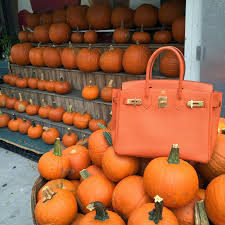 Pumpkin Picking Nyc 2014 by Kaki West Official Blog