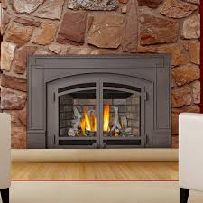 Minimalist Living Room Ideas With Direct Vent Natural Gas