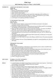 Download NPI Project Manager Resume Sample As Image File