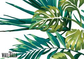 Monstera Palm Jungle Wallpaper Removable