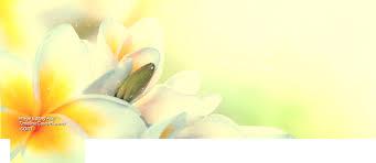 Retro Vintage Flower Facebook Cover
