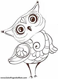 Baby Owl Coloring Page Book Pencil And In Color