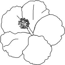 Hibiscus Flower Coloring Page Eliolera