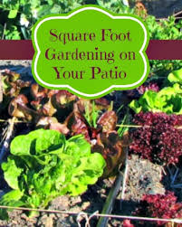 Square Foot Gardening on Your Patio or Deck