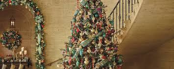 Longest Lasting Christmas Tree by The World U0027s Most Beautiful Trees Home Style