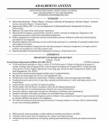22137 Criminal Justice Resume Examples Government Resumes LiveCareer Format Ideas