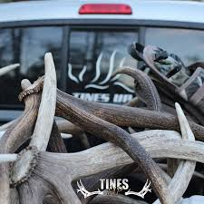 Shed Hunting Utah 2014 by Tines Up 2 945 Photos 662 Reviews Retail Company 466 E 600