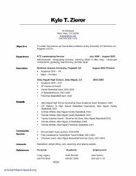 Sample Resume For Highschool Freshman New Unique High