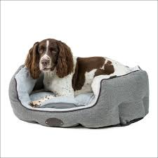 Chew Resistant Dog Bed by Living Room Awesome Indestructible Dog Harness Nylabone