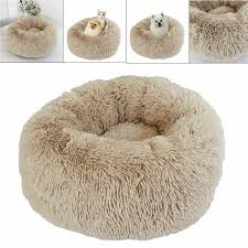 US $9.1 38% OFF|Pet Dog Cat Calming Bed Round Nest Warm Soft Plush  Comfortable Fur Donut Puppy Kennel Pet House Small Animals Home With Mat-in  Cat ... I Got A Beanbag Chair For My Room And Within Less Than 10 Best Bean Bags The Ipdent Cat Lying Gray Chair Bag Stock Photo More Pictures Of The Plop Teardropshaped Spillproof Bag Mrphy Sumo Sway Couple Beanbag Review Surprisingly Supportive Washable Warm Dogs Cats Round Sofa Autumn Winter Plush Soft Breathable Pet Bed Noble House Faux Fur Bean Silver Animal Print Walmartcom Choose Right Fabric Your Chairs Big Joe Lux Wild Bunch Calico In Fuzzy Download Devrycom Exclusive Home Decoration
