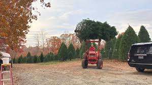 Griswold Christmas Tree Farm by Thankfulthursday 5 Reasons My Husband Still Loves Me After