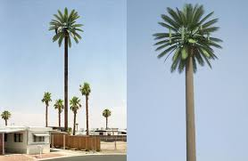 cell phone tower disguised as a palm tree 25 Cell Phone Towers Disguised to Look Like