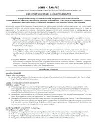 Sample Telemarketing Director Resume Call Center Examples Plus It Manager