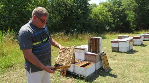 Pickens Beekeeper Kerry Owen Named 2016 South Carolina Farmer Of The ... Foltz Land Management Forestry Mulching Clearing Grading Mountaire Farms Millsboro De Rays Truck Photos Perdue Salisbury Md June 11 Casper Wy To Laurel Mt Real Estate Easley Sc Homes For Sale Delco Realty Search Eden Weddingeasley Scslbymatthew Greenville 7 Upstate That Go Above Beyond The Kale Of Duty About Gilstrap Family Dealerships In South Carolina