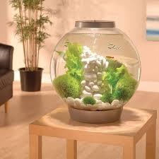 Petco Flower Ball Aquarium Decor by Amazon Com Biorb Classic 60 Aquarium With Led Light 16 Gallon