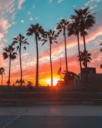 Los Angeles California By Debodoes