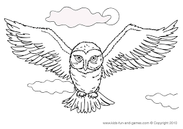 Detailed Owl Coloring Pages