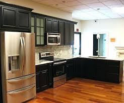 kitchen cabinets san jose colorviewfinder co