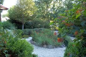 Native Plant Initiative Mounts Botanical Garden of Palm Beach