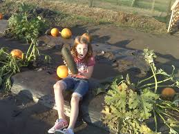 Boone Hall Pumpkin Patch And Corn Maze by Four Little Feet Growing Up