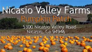 Pumpkin Patch Santa Rosa by Nicasio Valley Farms Pumpkin Patch California Haunted Houses