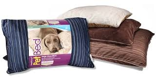 poochplanet lounge beds