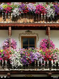 Italian Balconies Moso In Pasiria South Tyrol Province Trentino Alto Adige Region Italy Id Love This The Europeans Have Edge On Hanging Baskets