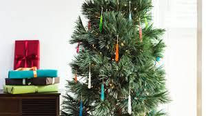 Nordmann Fir Christmas Tree Seedlings by Living Christmas Trees Sunset