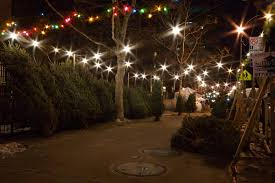 Christmas Tree Shop Freehold Nj by Christmas Tree Locations Nyc Christmas Lights Decoration