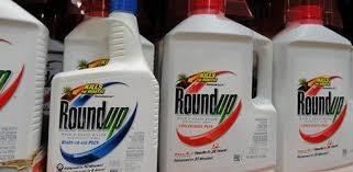 Roundup Glyphosate Weed Killer
